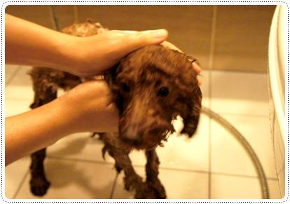 20120224_ bath3