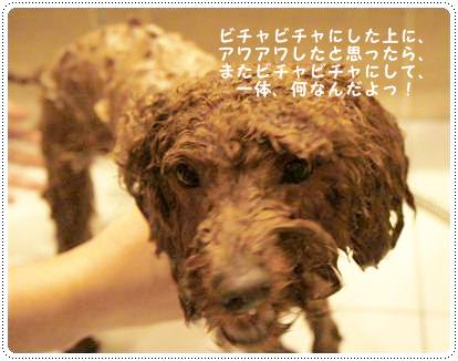 20120224_ bath7