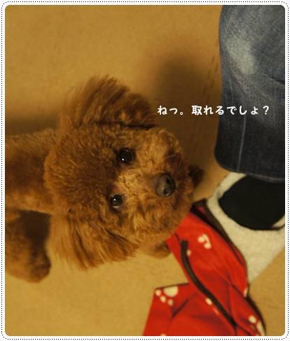 20120314_9months3.jpg