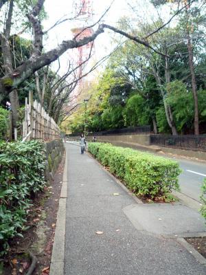増上寺・小道