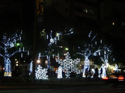 20111224_いぶ12
