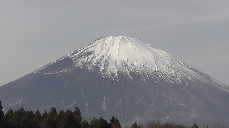 2012-01-01_1117272.jpg