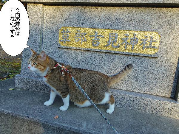 吉見神社2