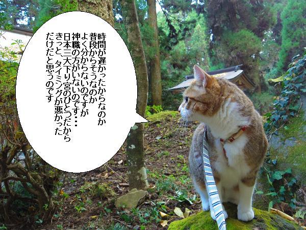 吉見神社8