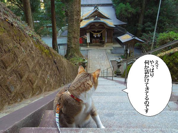 吉見神社12