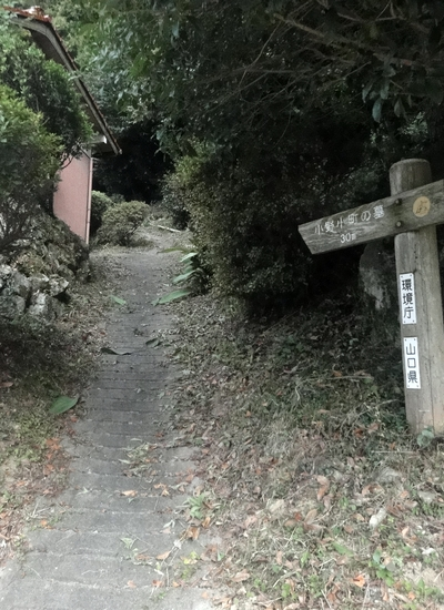 230814 小野小町墓2