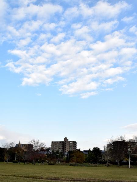 20141205 散歩18