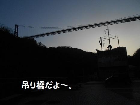 DSCN8799.jpg