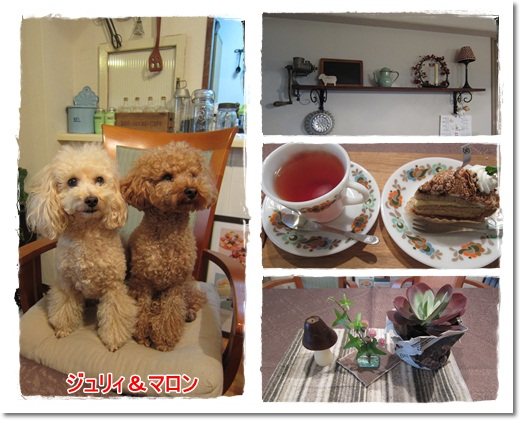 2011・11・14・Cafe SETSUKO邸ー3