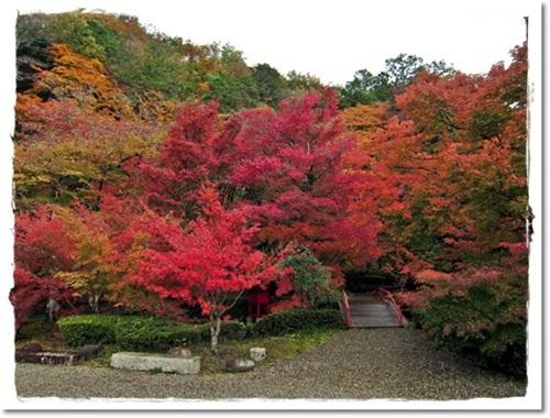 2011・11・21・安国寺下ガレージセールー2