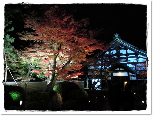 2011・12・1・高台寺ー1