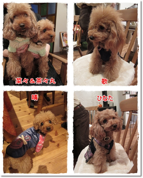 2011・12・17・AKKO&ISA来訪ー5