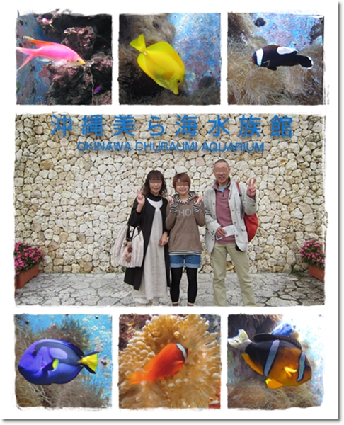 2011・12・23・美ら海水族館ー4