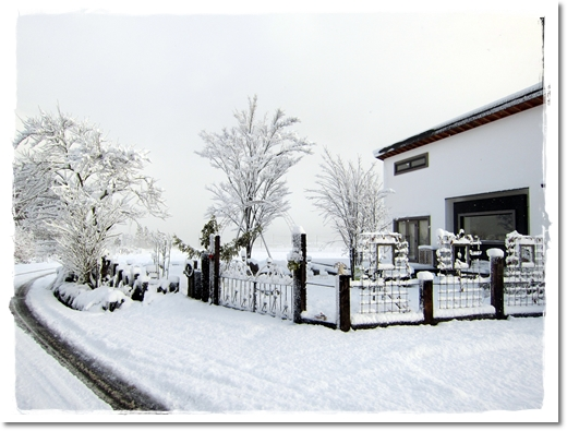 2012・1・5・大雪ー4