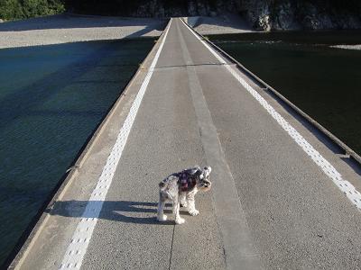 沈下橋とひめ