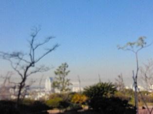 2012112013350001.jpg