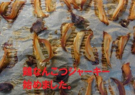 2011_10120168.jpg