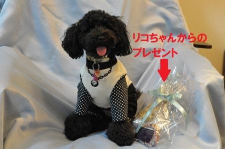 リコちゃんのプレゼント