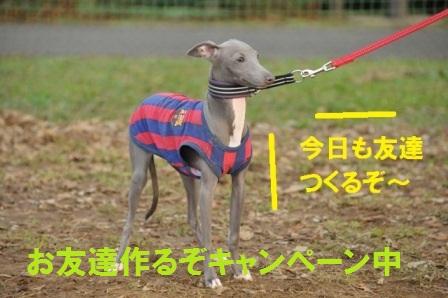 小太郎くんお友達キャンペーン