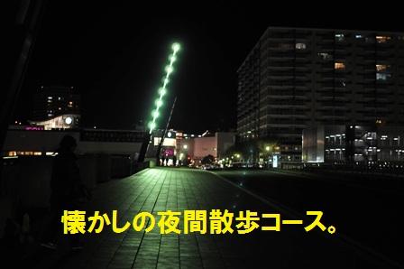 コスモス大橋