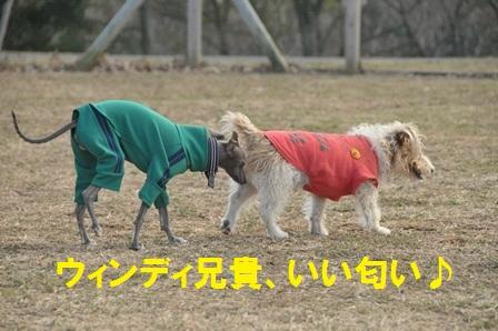ウィン&小太郎いい匂い