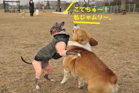 ペネちゃん苦戦!