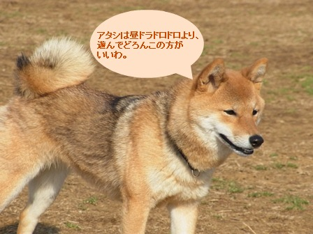 ①ナナちゃん