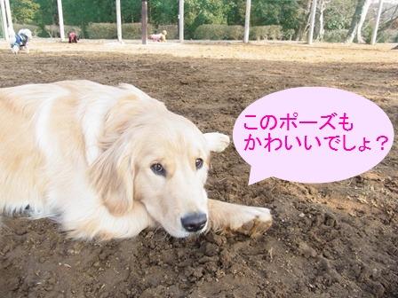 ①マリアちゃんショットNO.2
