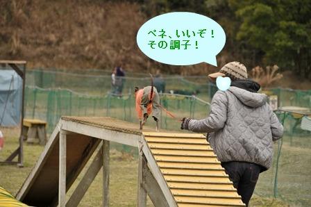 2012_02260181.jpg