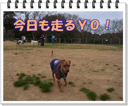 もんた走るYO