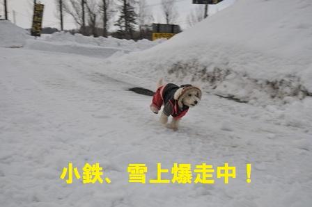小鉄雪上爆走