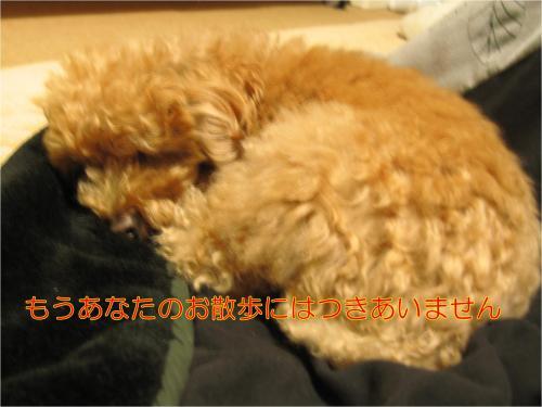 散歩_convert_20120222005454