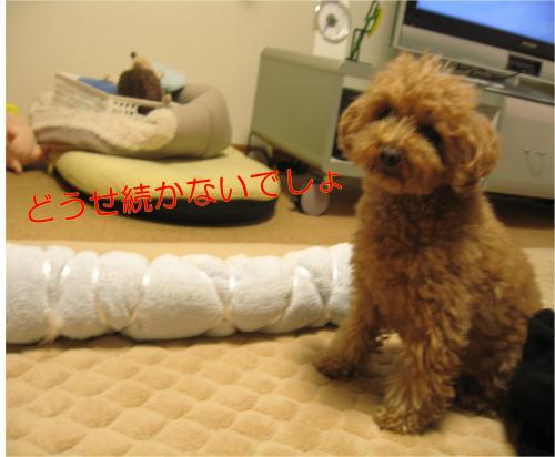 枕_convert_20120225150326