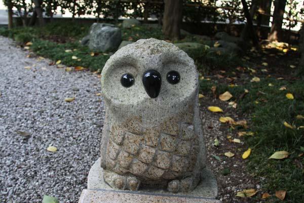 埼玉の自然
