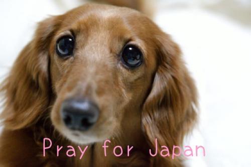 Pray-for-Japan2012-2.jpg