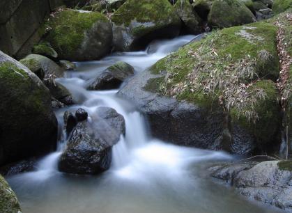 川の流れ1