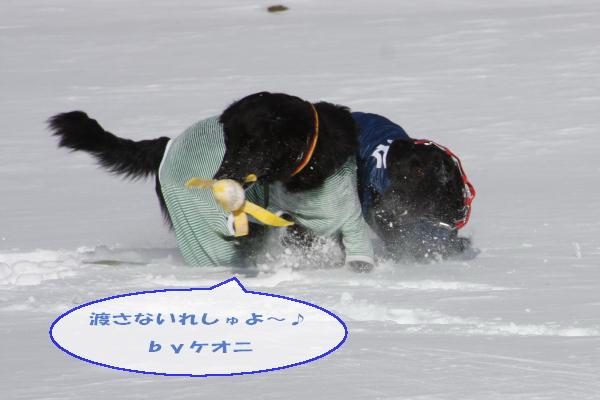 120114_022.jpg