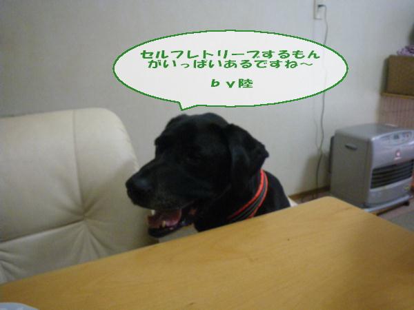 mmkk2012_030.jpg