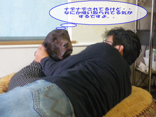 mmkk2012_043.jpg