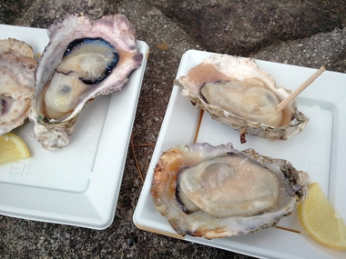 やっぱ 殻付の牡蠣は最高においしいね♪