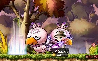 Maple10039a.jpg