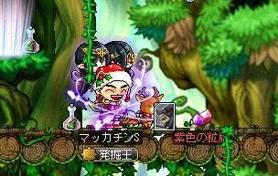 Maple10079a.jpg