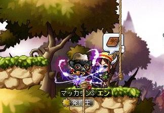 Maple10100a.jpg