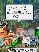 Maple10192a.jpg