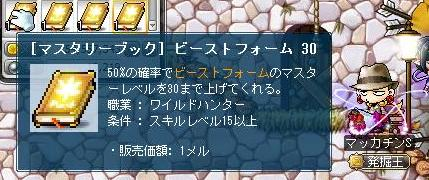 Maple11004a.jpg