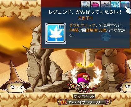 Maple9872a.jpg