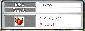 Maple9909a.jpg