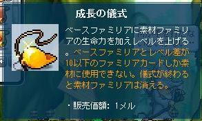 Maple9948a.jpg