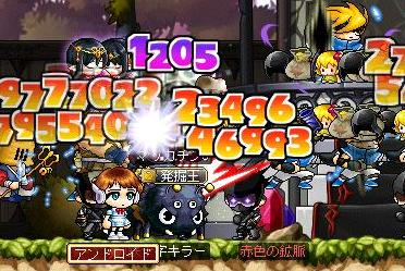 Maple9979a.jpg