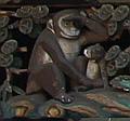 (1) 母子の猿